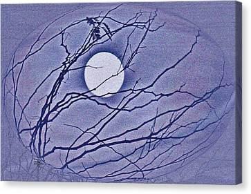 A Las Vegas January Full Moon Canvas Print by Carl Deaville