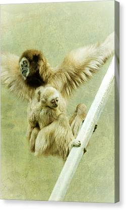 A Mother's Love Canvas Print by Trish Tritz