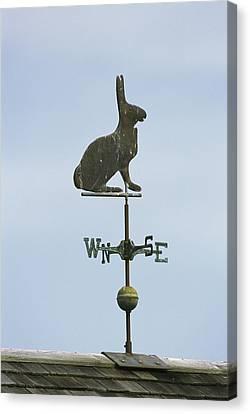 A Rabbit-shaped Weathervane Atop A Roof Canvas Print by Darlyne A. Murawski