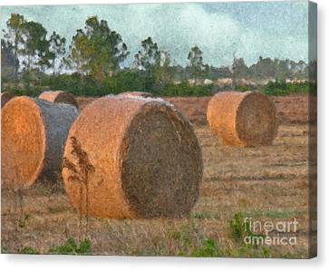 A Roll In The Hay Canvas Print by Peggy Starks