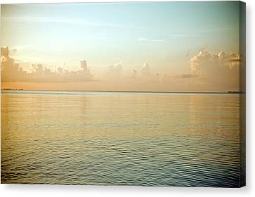 A Serene Landscape Of The Ocean And Sky At Sunrise Canvas Print by Adam Hester