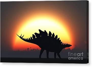 A Stegosaurus Silhouetted Canvas Print by Mark Stevenson