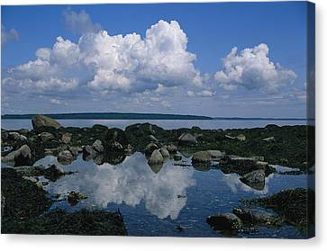 A Tidal Pool Reflects The Stark Beauty Canvas Print by Stephen St. John