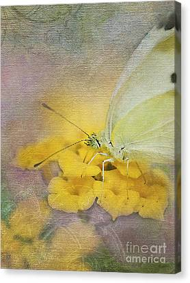 A Touch Of Yellow Canvas Print by Betty LaRue
