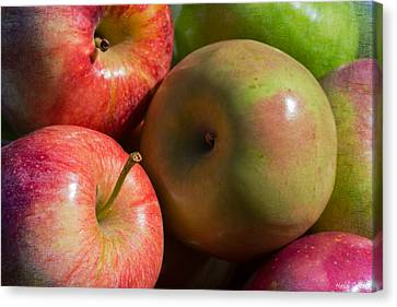 A Variety Of Apples Canvas Print by Heidi Smith