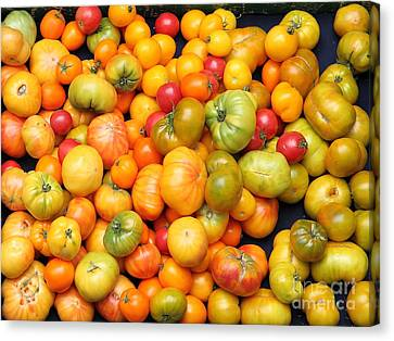 A Variety Of Fresh Tomatoes - 5d17904 Canvas Print by Wingsdomain Art and Photography