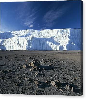 A View Of Mount Kilimanjaros Summit Canvas Print by David Pluth