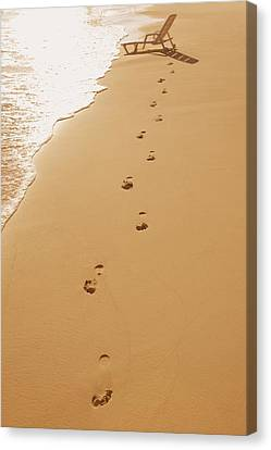 A Walk On The Beach Canvas Print by Don Hammond