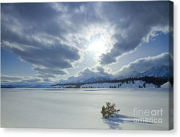 A Winter Sky Canvas Print by Idaho Scenic Images Linda Lantzy