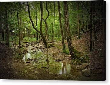 A Woodland Stream In Cades Cove No.472 Canvas Print by Randall Nyhof