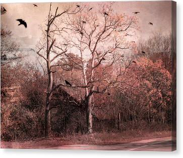 Abandoned Haunted Barn With Crows Canvas Print by Kathy Fornal