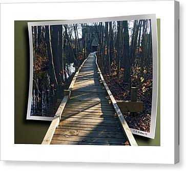 Abbotts Nature Trail Canvas Print by Brian Wallace