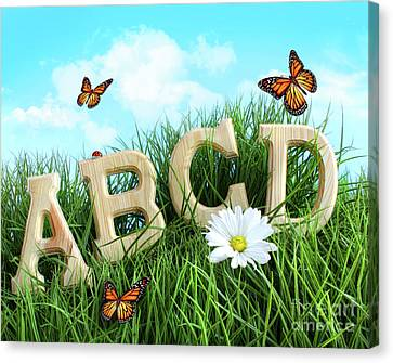 Abc Letters With Daisy In Grass Canvas Print by Sandra Cunningham