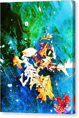Abstract-11 Canvas Print by Todd Sherlock