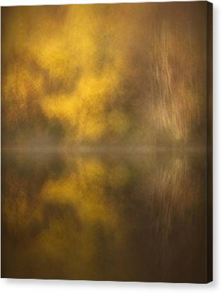 Abstract Birch Reflections Canvas Print by Andy Astbury