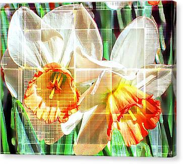 Abstract Daffodils  Canvas Print by Cathie Tyler