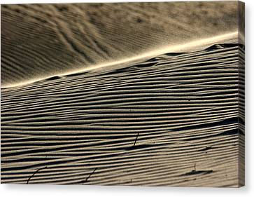 Abstract Sand 2 Canvas Print by Arie Arik Chen