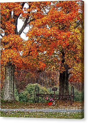 Adirondack Autumn Beauty Canvas Print by Diane E Berry
