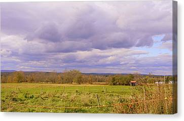 Afternoon In The Country Canvas Print by Katina Cote