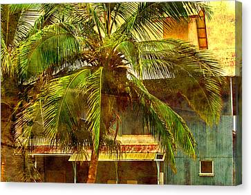 Aged Hawaiian Canvas Print by Paulette B Wright