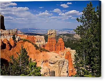 Agua Canyon Bryce Canyon National Park Canvas Print by Greg Norrell