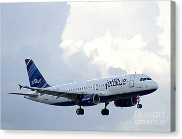 Airplane Canvas Print by Blink Images
