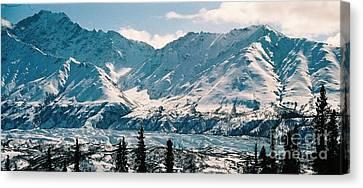 Alaska Deep Freeze Canvas Print by Judyann Matthews