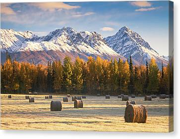 Alaska Farming Canvas Print by Alaska Photography