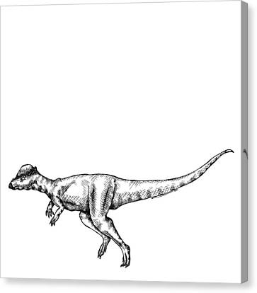 Doodle Art Canvas Print featuring the drawing Alaskacephale Dinosaur by Karl Addison