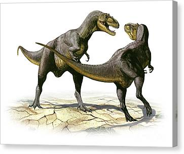 Alectrosaurus Olseni, A Prehistoric Canvas Print by Sergey Krasovskiy