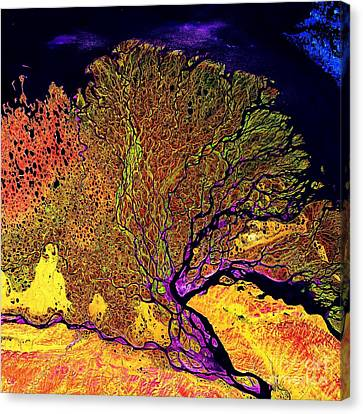 Alluvial Abstract Canvas Print by Roberto Prusso