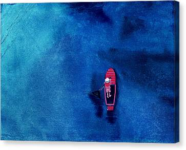Alone 1 Canvas Print by Anil Nene