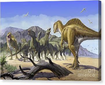Altispinax Dunkeri Dinosaurs Attack Canvas Print by Sergey Krasovskiy