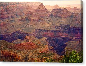 Amazing Colorful Spring Grand Canyon View Canvas Print by James BO  Insogna
