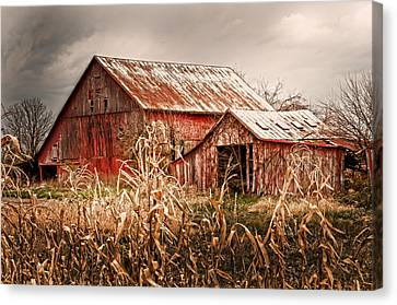 America's Small Farm Canvas Print by Randall Branham