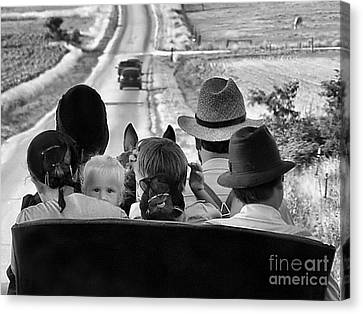 Amish Family Outing II Canvas Print by Julie Dant