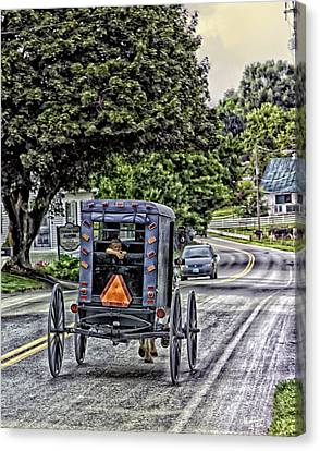 Amish Girl Canvas Print by Madeline Ellis