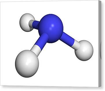 Ammonia Molecule Canvas Print by Dr Tim Evans