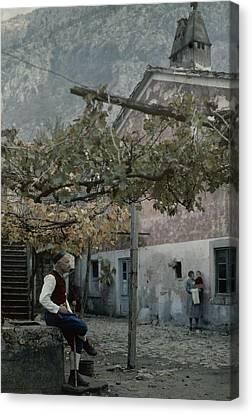An Old Man Sitting Under His Grape Canvas Print by Wilhelm Tobien