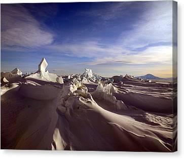 Antarctic Landscape 152 Canvas Print by David Barringhaus