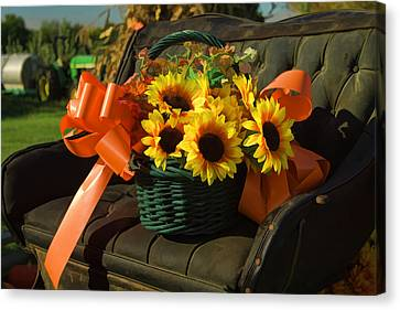Antique Buggy And Sunflowers Canvas Print by Kathy Clark