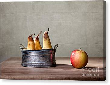 Apple And Pears 01 Canvas Print by Nailia Schwarz