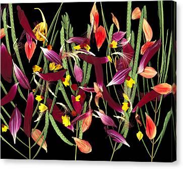 April In Paris Canvas Print by Tim Fleming