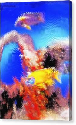 Aquarium Art 8 Canvas Print by Steve Ohlsen