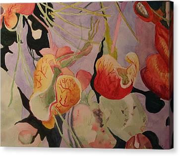 Aquatic Pitcher Plants Canvas Print by Carol Marcus