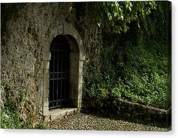 Arched Doorway With Iron Grate Canvas Print by Todd Gipstein