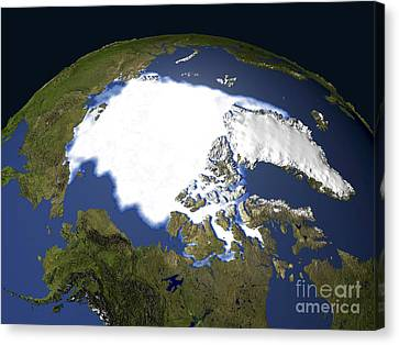 Arctic Sea Ice, 1979 Canvas Print by NASA / Science Source