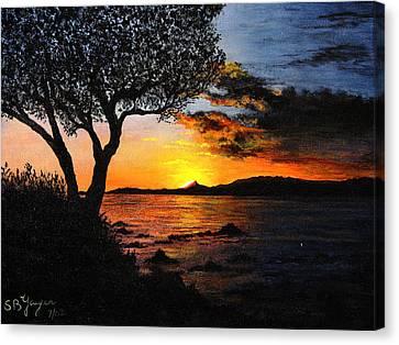 Aruba Sunset Canvas Print by Stuart B Yaeger