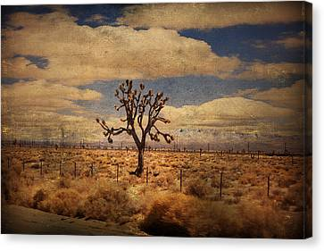 As We Go Down Life's Lonesome Highway Canvas Print by Laurie Search