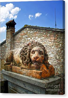 Assisi Italy - Lion Statue Canvas Print by Gregory Dyer